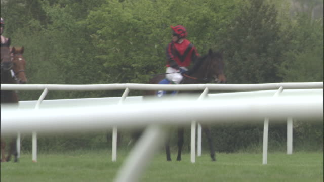 slo mo ws five jockeys on horses walking one behind the next at newbury racecourse / newbury, england, uk - see other clips from this shoot 1045 stock videos and b-roll footage