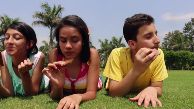 five teenage boys and girls eating chocolate in the park, delhi, india - チョコレート点の映像素材/bロール