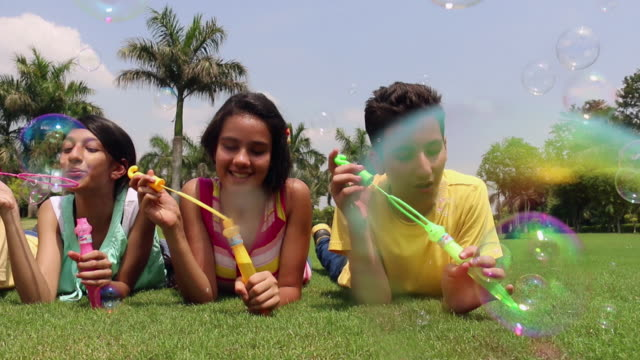 Five teenage boys and girls playing with bubble wand in the park, Delhi, India