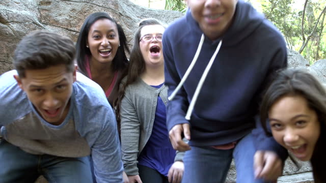 Five teens in park by rock wall, girl with down syndrome
