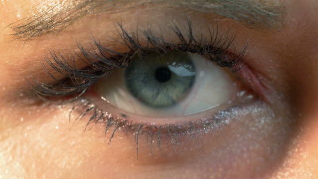 five videos of human eye in 4k - cornea stock videos & royalty-free footage