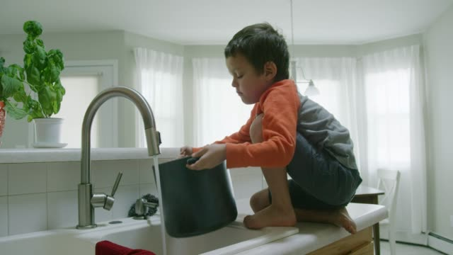 a five year-old caucasian boy opens a cabinet, pulls out a tall pot, climbs on to the counter, and starts filling the pot with water from the kitchen sink - putting stock videos & royalty-free footage