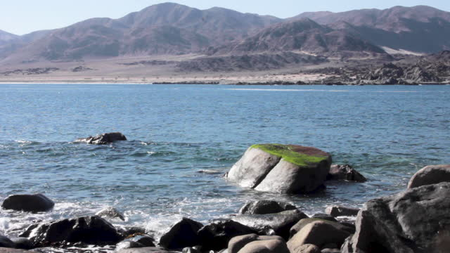 fixed shot, by noon, of the rocks on the shore of pan de azucar island. thereõs a huge rock covered by lichen on the foreground. in the background we... - atacama region stock videos & royalty-free footage