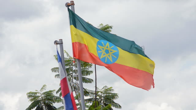 ms flag blowing in wind / ethiopia - ethiopia stock videos & royalty-free footage