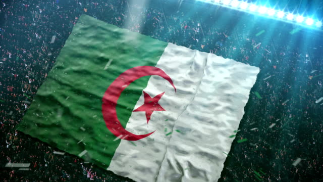 flag of algeria at the stadium - 2014 stock videos and b-roll footage