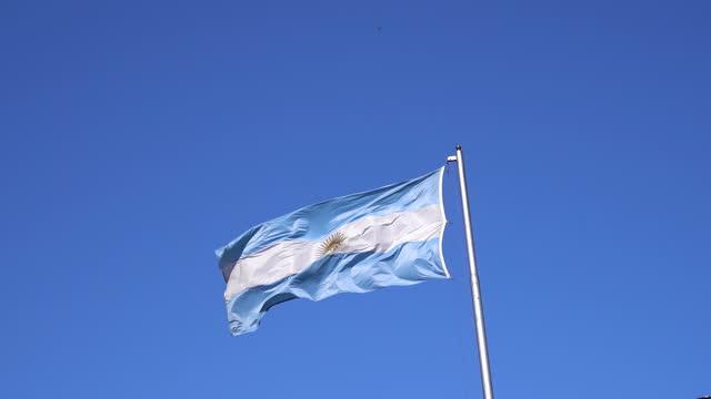 flagge von argentinien im wind - argentinische flagge stock-videos und b-roll-filmmaterial