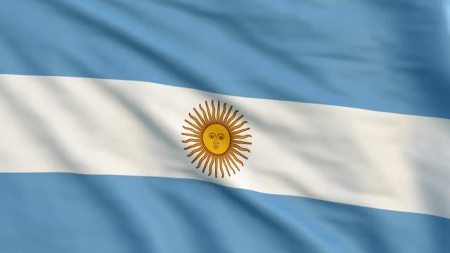 flag of argentina - cultura argentina video stock e b–roll