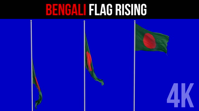 flag of bangladesh - flag of bangladesh stock videos & royalty-free footage