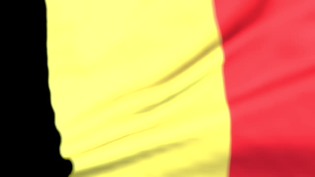 Flag of Belgium Loopable Belgian Flag
