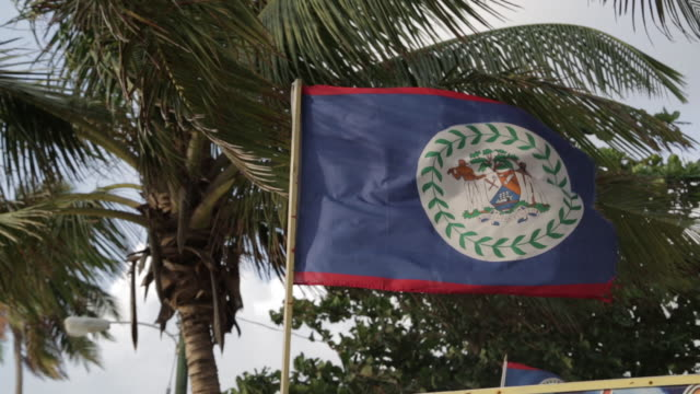 Flag of Belize blows in the wind