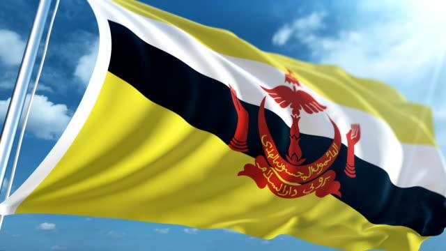 stockvideo's en b-roll-footage met vlag van brunei   loopbare - paalzitten