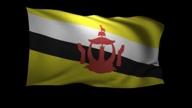 cgi flag of brunei waving against black background - brunei stock videos & royalty-free footage