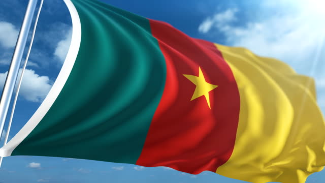 Flag of Cameroon | Loopable