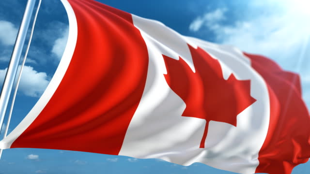 flag of canada | loopable - bandiera del canada video stock e b–roll