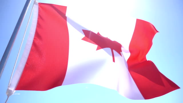 bandiera del canada - bandiera del canada video stock e b–roll