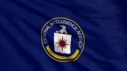 Flag of CIA