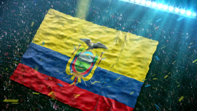 flag of ecuador at the stadium - ecuador stock videos & royalty-free footage