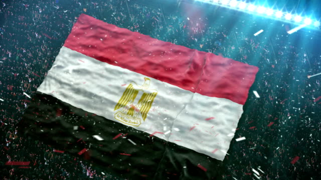 flag of egypt at the stadium - cup stock videos & royalty-free footage