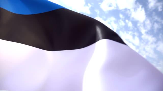 Flag of Estonia High Detail