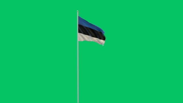 Flagge von Estland Rising