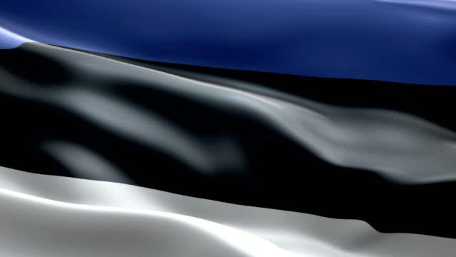 vídeos de stock, filmes e b-roll de bandeira da estónia - elemento de desenho