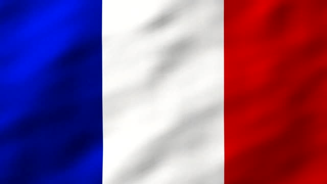 Flag of France fluttering in breeze