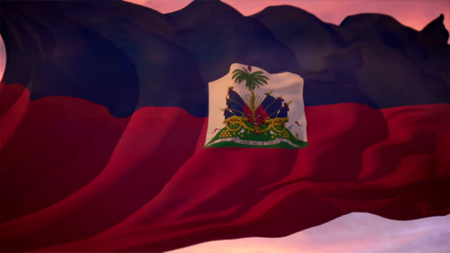 stockvideo's en b-roll-footage met flag of haiti - haïti