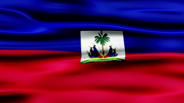flag of haiti - french revolution stock videos & royalty-free footage