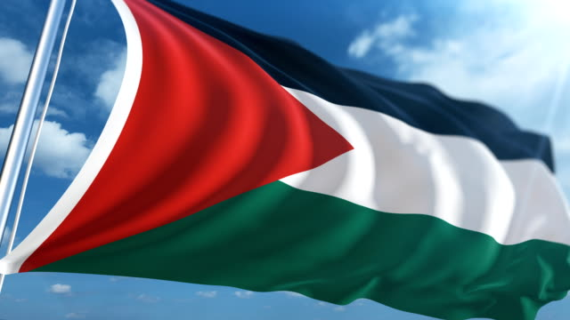 flag of palestine   loopable - palestinian flag stock videos & royalty-free footage