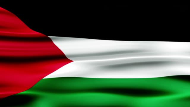 flag of palestine - palestinian flag stock videos & royalty-free footage