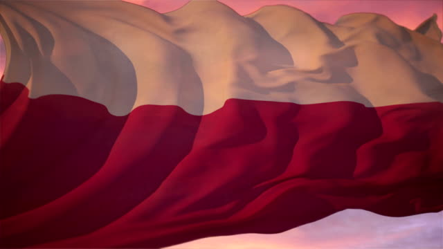 flag of poland - flag blowing in the wind stock videos & royalty-free footage