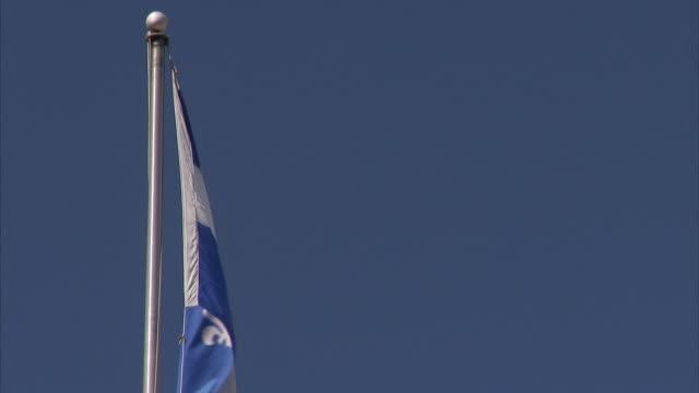 flag of quebec, the fleurdelise, flying on top of pole, strong winds, clear sky bg. fleur-de-lis emblem, white cross, blue - ケベックの旗点の映像素材/bロール