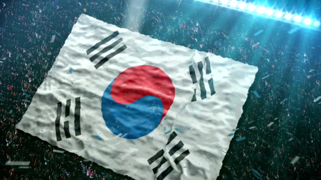 Flag of South Korea at the stadium