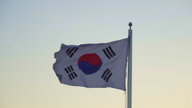 flag of south korea flapping during sunset - north korea stock videos & royalty-free footage