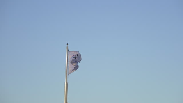 flag of south korea flapping during sunset - politics icon stock videos & royalty-free footage