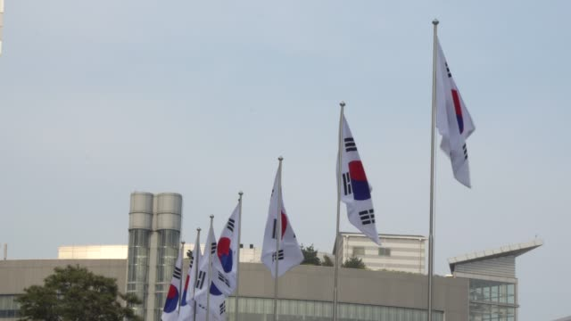 南チョウセンの旗「昼間の羽ばたき」 - 政治点の映像素材/bロール