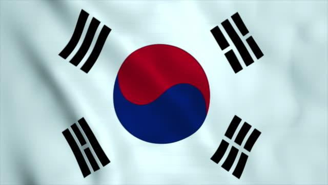 vídeos de stock, filmes e b-roll de bandeira da coreia do sul  - coreia do sul