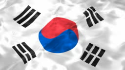 Flag of the South Korea looping 3D animation