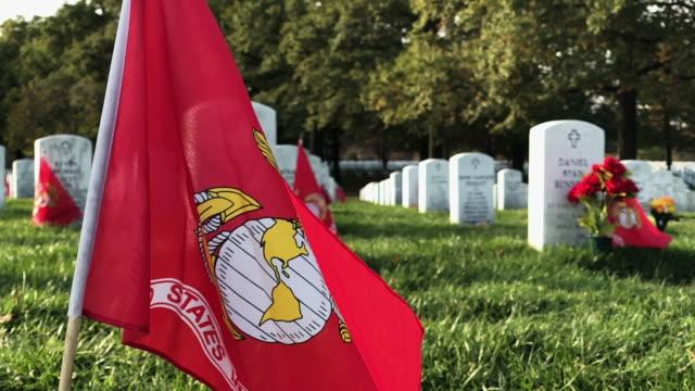 flag of the u.s. marine corps flies at section 60 at arlington national cemetery on veterans day november 11, 2019 in arlington, virginia. americans... - 海兵隊員点の映像素材/bロール
