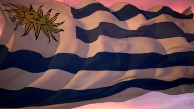 flag of uruguay - uruguaian flag stock videos & royalty-free footage