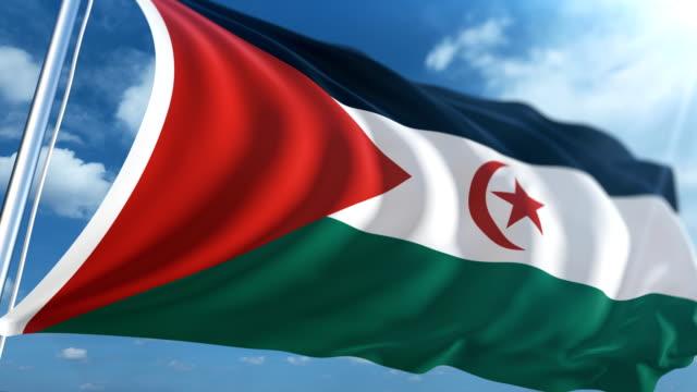 stockvideo's en b-roll-footage met vlag van de westelijke sahara   loopbare - paalzitten