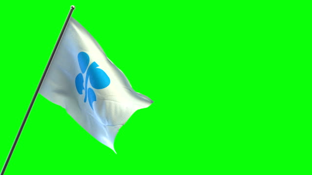 OPEC-Flagge