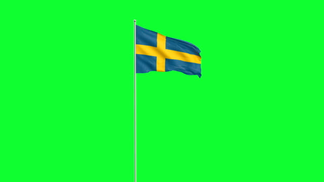 flag - swedish flag stock videos and b-roll footage