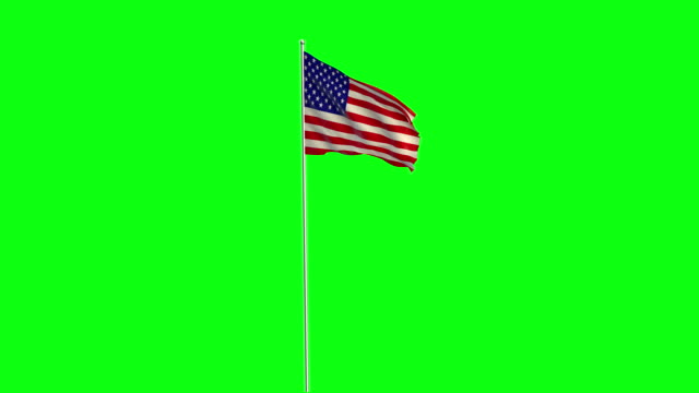 flag - stars and stripes stock videos & royalty-free footage