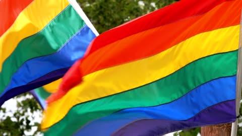 bandiere lgbt che sventolano nel vento - diritti lgbtqi video stock e b–roll