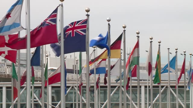 wgn flags from various world countries on flag poles at chicago's o'hare on march 21 2017 - o'hare airport stock videos & royalty-free footage