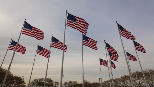 stockvideo's en b-roll-footage met flags, liberty state park, new jersey, new york, usa - new jersey