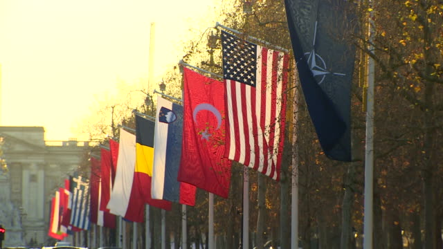 flags of nato nations flying in the mall before a reception at buckingham palace - stars and stripes stock videos & royalty-free footage