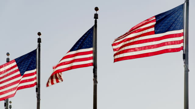 flags of the united states flying against clear blue sky - stars and stripes stock videos & royalty-free footage