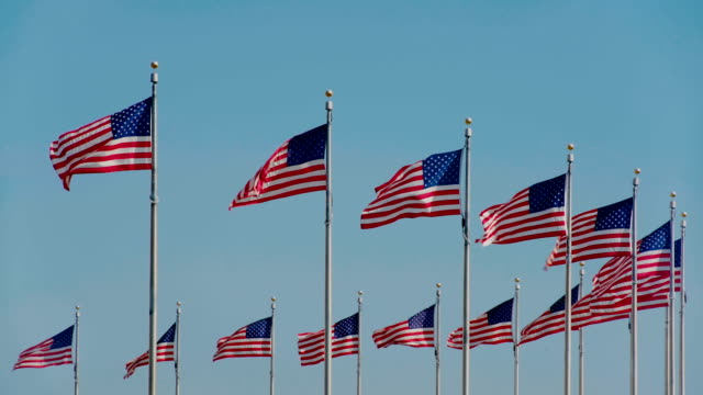 Flags of the United States flying against clear blue sky